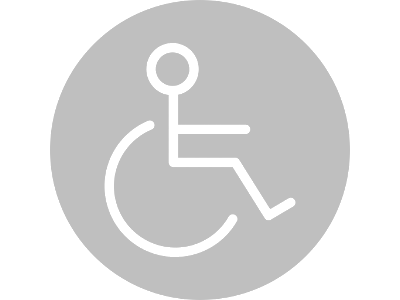 eclisse-and-disability-ltgrey.png